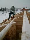 Arbeide på taket av laftehytte