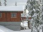Tors stavlaft hytte i vinter