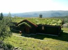Bitihorn laftehytte in summer with green roof