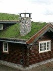 Kaffe laftehytte designed in coffee colour wood with natural stone chimney and roof covered with greensward